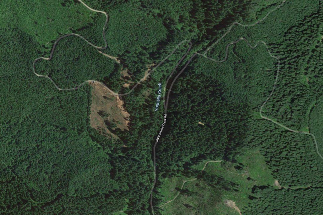 Yoncalla Creek Restoration